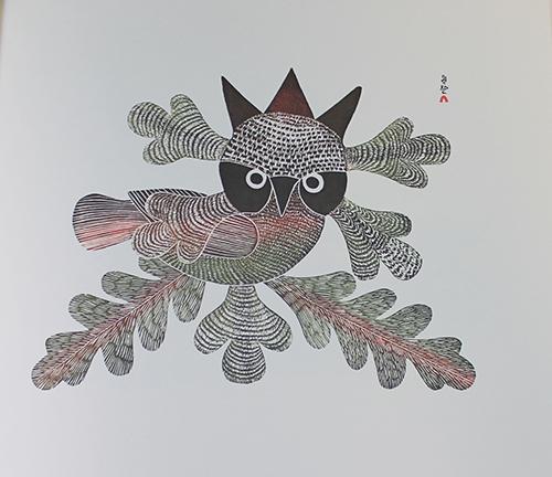 "<span id=""docs-internal-guid-f989058c-2848-0ea1-d35c-effbf66244cc""><span>An image of </span><em>Kenojuak: Graphic Masterworks of the Inuit</em><span> by Jean Blodgett</span></span>"