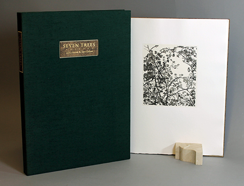 "<span id=""docs-internal-guid-f989058c-282a-ecb9-bfcd-c1820c81dc53""><span>An image of </span><em>Seven Trees</em><span> by Julia Alvarez</span></span>"