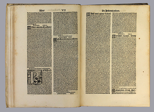"<span id=""docs-internal-guid-f989058c-1e17-42ea-1104-e5b6bbaba945""><span>An image of </span><em>De Proprietatibus Rerum</em><span> by Angelicus Bartholomaeus</span></span>"