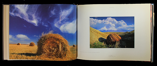 "<span id=""docs-internal-guid-f989058c-282f-0f01-89be-7d8167e39d3e""><span>An image of </span><em>Alberta Images</em><span> by Daryl Benson</span></span>"