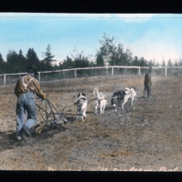 Ploughing at Hay River