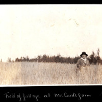 Miriam Green Ellis in Rye Field